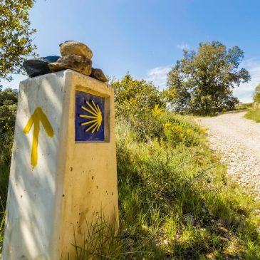 Caminoen – Alt du bør vide om at gå Caminoen i 2021