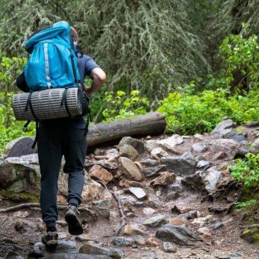 Den bedste rygsæk til dagsture – vores guide til det rigtige valg