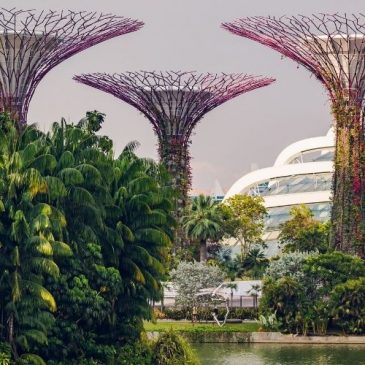 Seværdigheder i Singapore: Vores top-5 over ting at se i Singapore