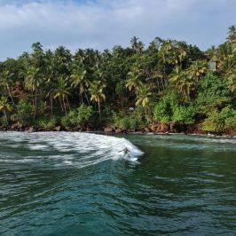 Surfing i Sri Lanka