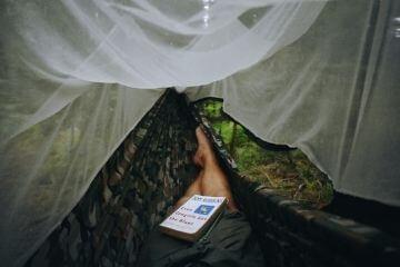 Myggenet vandring